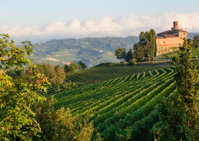 Langhe and Barolo wine region