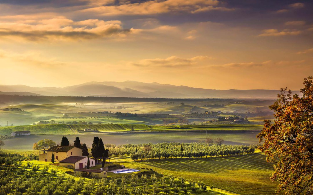 Province of Livorno, Maremma & Bolgheri Region – Dream Wedding Destinations in Tuscany