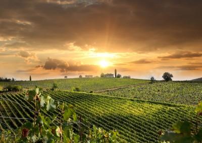 Amazing scenery in the Chianti region